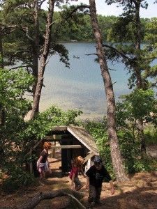 Hiking Trails on Cape Cod